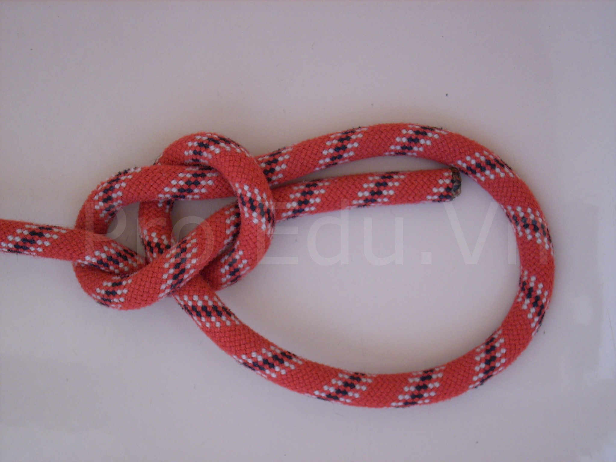 gut-ghe-don-bowline-knot